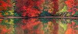 Autumn Reflection print