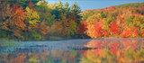 Autumn Stillness print