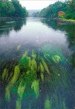 Millers River print