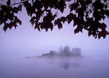 fog, island, quabbin reservoir, masachusetts