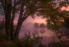 autumn, sunrise, island, fog, Massachusetts, Patrick Zephyr, New England, dawn, Harvard Pond, Petersham