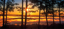 Quabbin reservoir, Massachusetts, fog, sunrise, trees