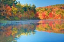 Autumn, Massachusetts, pond, sunrise, fog