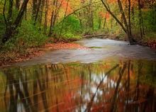 Amherst, autumn, amethyst brook, Massachusetts