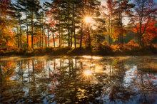 autumn, reflection, harvard pond, sunrise, dawn, pond, petersham, massachusetts, patrick zephyr, sunstar