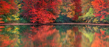 Autumn, reflection, Amherst, Massachusetts,