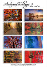 Autumn Foliage 2 Set