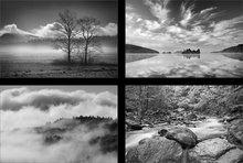 Black & White (4 images)