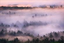 Quabbin Reservoir, fog, forest, sunrise
