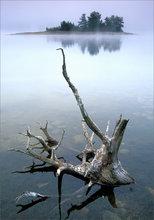 quabbin reservoir, massachusetts, fog, island