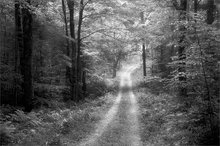Trail, country road, quabbin reservoir, Massachusetts,