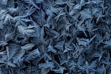 ice, frost, winter, cold, Massachusetts, Patrick Zephyr, macrophotography