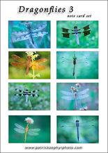 Dragonflies 3 Set