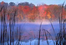 Connecticut, pond, autumn, sunrise