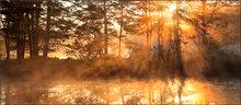 Harvard pond, petersham, Massachusetts, island, sunrise, sun rays