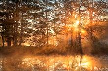 harvard pond, petersham, Massachusetts, fog, dawn, sunrise, reflection, island, autumn