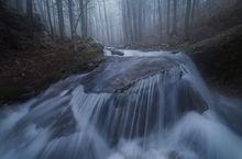 fog, stream, cascade, forest, Massachusetts, New England, Patrick Zephyr, Pelham, stream