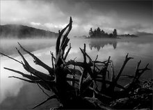 Island, quabbin reservoir, Massachusetts, sunrise, fog