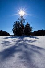 quabbin reservoir, island, star, winter, shadow,