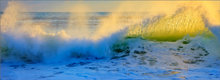 Wave, ocean, Florida,