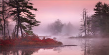 Harvard pond, petersham, Massachusetts, island, sunrise, fog