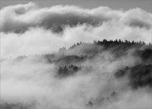 Quabbin reservoir, Massachusetts, fog,