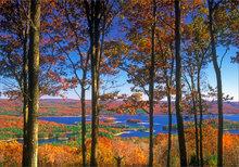 Quabbin reservoir, Massachusetts, autumn, forest, new Salem