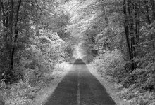 Rail trail, Hadley, Massachusetts,