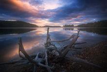 quabbin reservoir, massachusetts, driftwood, lake, sunset, evening, new salem,