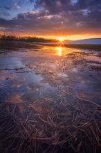 Hadley, sunset, dusk, reflection, Massachusetts, Patrick Zephyr