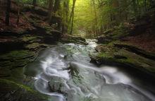 cascade, stream, waterfall, shutesbury, massachusetts, moss, forest