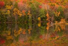 lithia springs, south hadley, massachusetts, autumn, reflection, new england, patrick zephyr