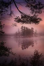 fog, island, harvard pond, petersham, Massachusetts, lake, sunrise, dawn