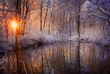 winter, reflection, vernal pool, snow, sunrise, Pelham, Massachusetts, forest, trees