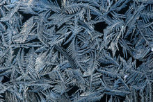 ice, frost, winter, Massachusetts, Patrick Zephyr,