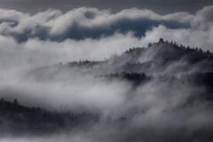 Quabbin Fog