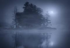 Night at Harvard Pond