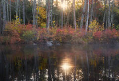 Tully Lake, Royalston, Massachusetts, autumn, fall, reflection, lake, dawn, patrick zephyr