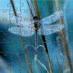 Small Puzzle (50pc)