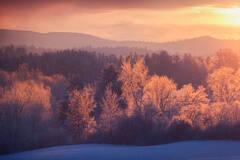 Amherst Hills