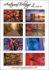 Autumn Foliage 2 Set