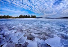 Ice Gathering