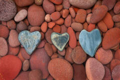 found love, colored rocks, heart rocks, stones, Patrick Zephyr, valentines day