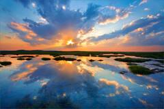 Plum Island Reflection