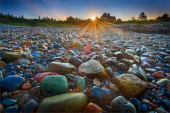 Schoodic Rocks