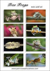 Treefrogs Set