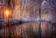 winter, reflection, vernal pool, snow, sunrise, Pelham, Massachusetts, forest, trees