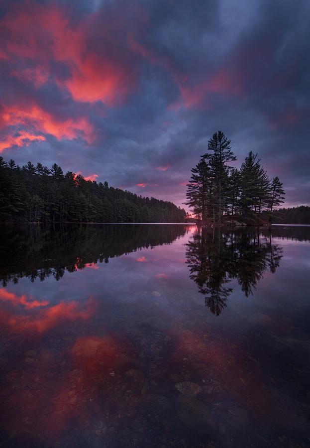 sunrise, quabbin reservior, Massachusetts, dawn, island, magenta, Patrick Zephyr, reflection, photo