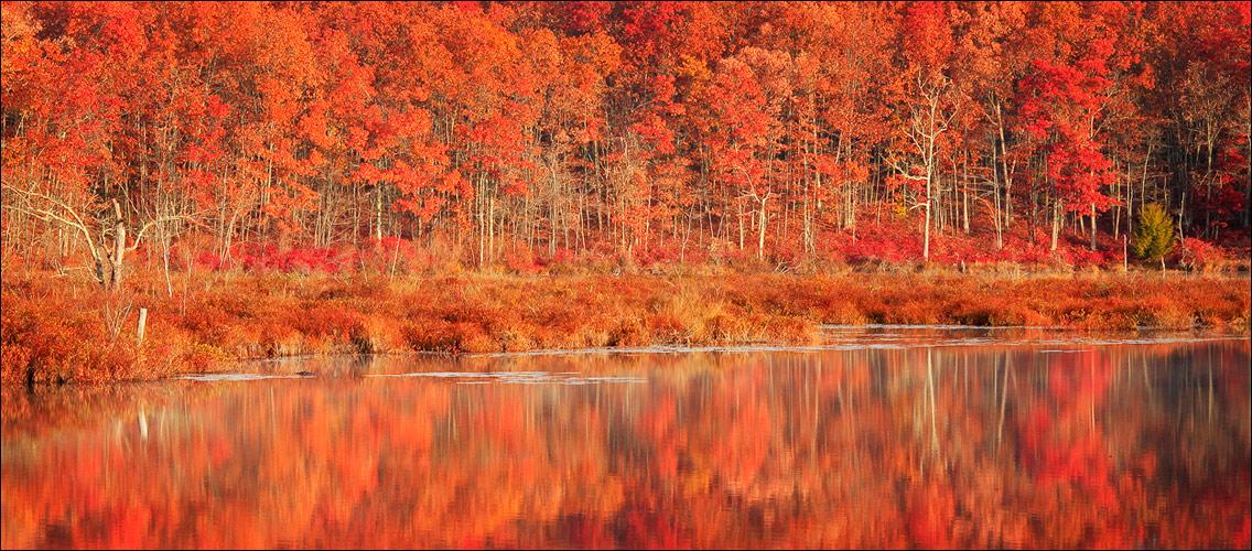 Autumn, reflection, dawn, new Salem, Massachusetts,, photo