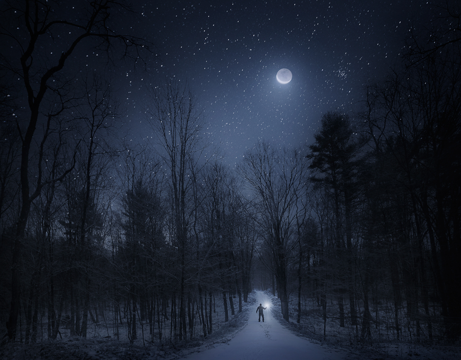 night in the forest quabbin reservoir ma patrick zephyr photography